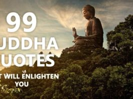 99 Buddha Quotes That Will Enlighten You
