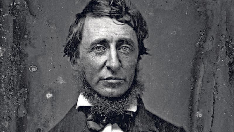 101 Henry David Thoreau To Be Successful