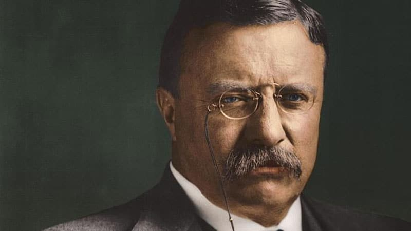 67 Famous Theodore Roosevelt Quotes On Success