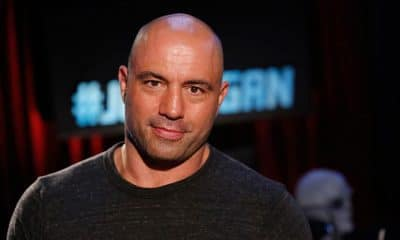 55 Joe Rogan Quotes That Will Motivate You To Success