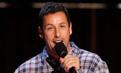 31 Adam Sandler Quotes On Life & Success